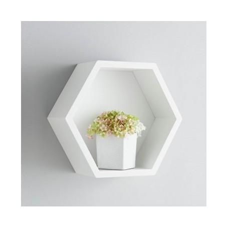 Shelf LED