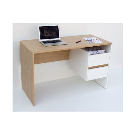 Pisalna miza IDA